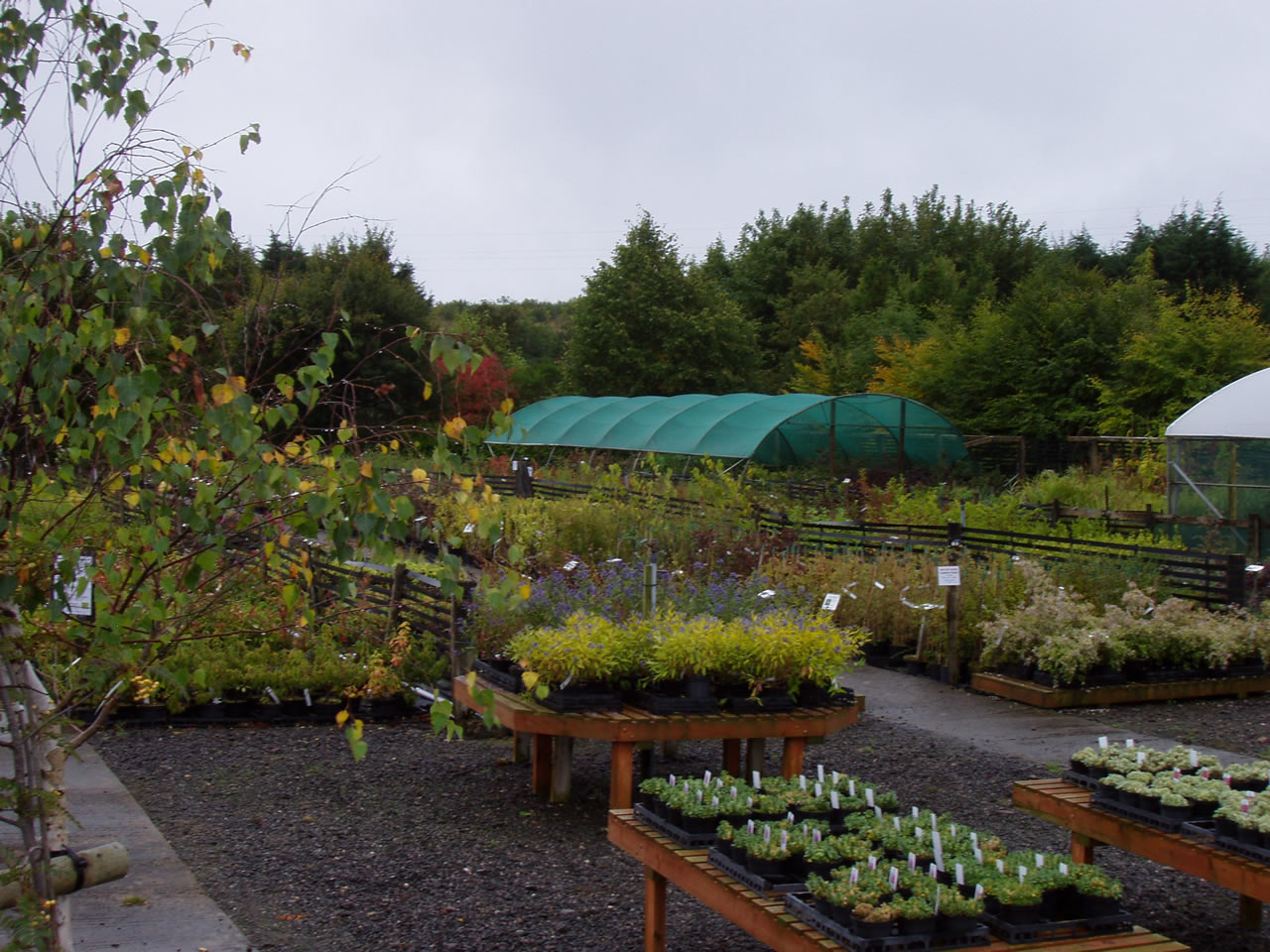Wibble Farm Nurseries